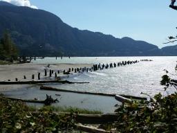 Pretty shoreline